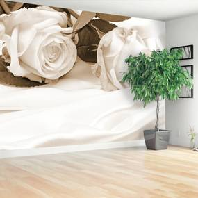 Fototapeta ruže Sépia