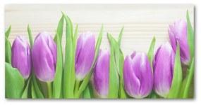 Foto obraz akrylové sklo Fialové tulipány pl-oa-140x70-f-78755149