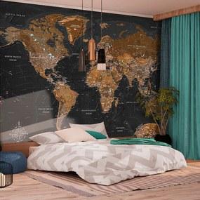 Fototapeta - World: Stylish Map 400x280