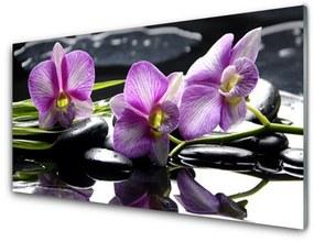 Nástenný panel Kvet kamene rastlina 140x70cm