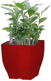 Samozavlažovací květináč G21 Cube mini červený 13.5cm