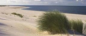 Vliesové fototapety, rozmer 250 x 104 cm, pláž, IMPOL TRADE 655VEP