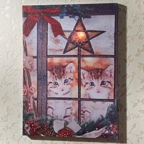 Magnet 3Pagen LED obraz Vianočné mačiatka