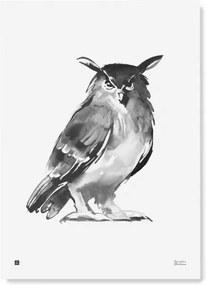 Plagát Eagle Owl 50x70 Teemu Järvi
