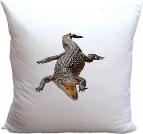 Vankúš Krokodíl (Veľkosť: 40 x 40 cm)