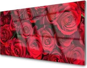 Sklenený obklad Do kuchyne Červené Ruže Kvety Príroda