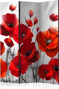 Paraván - Poppies in the Moonlight [Room Dividers] 135x172