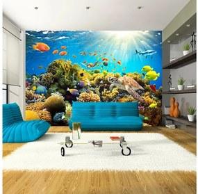 Veľkoformátová tapeta Artgeist Underwater Land, 300×210 cm