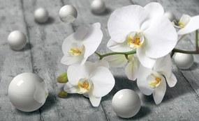 3D Fototapeta Orchidea papier 368 x 254 cm