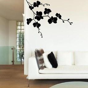 GLIX Květinová dekorace - samolepka na zeď Čierna 50 x 40 cm