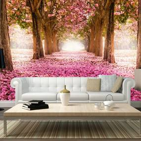 Fototapeta - Pink grove 400x280