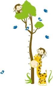 Samolepiaca dekorácia Meter žirafa s opičkou