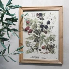 Chic Antique Botanický obraz v ráme Berries 43x33cm