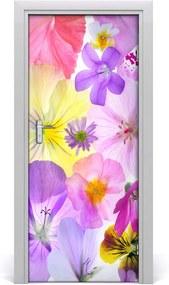 Fototapeta na dvere  farebné kvety