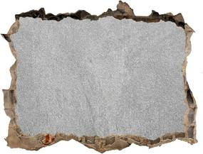 Díra 3D fototapeta na stěnu Šedé stěny WallHole-95x64-kamien-83709107