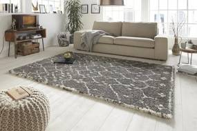 Mint Rugs - Hanse Home koberce Kusový koberec Allure 102760 grau - 80x150 cm
