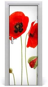 Fototapeta na dvere Poľné mak 95x205cm