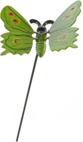 Dekorácia motýlik, zelená