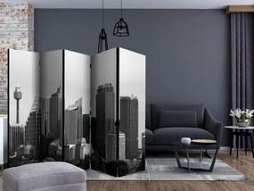 Paraván čiernobielych mrakodrapov v Sydney II
