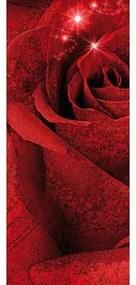 Dverová fototapeta - DV0171 - Červená ruža 91cm x 211cm - Vliesová fototapeta