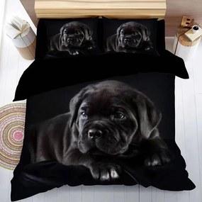 HOD Posteľné obliečky BLACK DOG 3 set 140x200cm