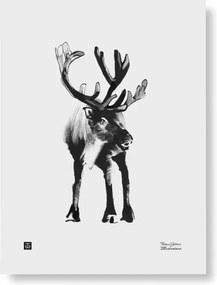 Plagát Reindeer 30x40 Teemu Järvi