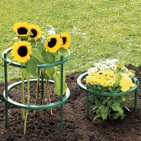 Opora pre rastliny, kruhová, 5 ks