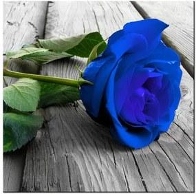 Tlačený obraz Nádherná modrá ruža na móle 2213A_1AI