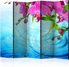 Paraván - Orchids over Water II [Room Dividers] 225x172