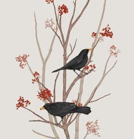 BLACKBIRD ON ROWAN TWIG  – format A3