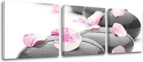 Obraz na stenu 3 dielny FENG SHUI FS019E32