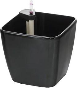 G21 samozavlažovací Cube černý 22cm čierny