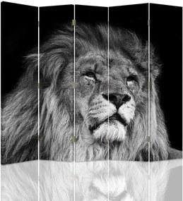 CARO Paraván - Lion In Gray | päťdielny | jednostranný 180x180 cm