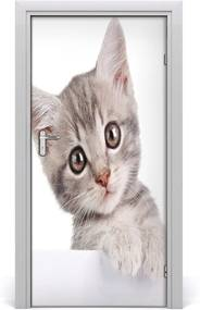 Samolepiace fototapety na dvere  sivá mačka