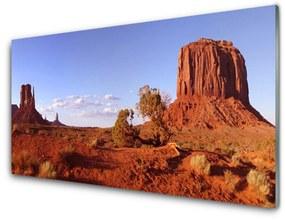 Nástenný panel Púšť krajina 100x50cm