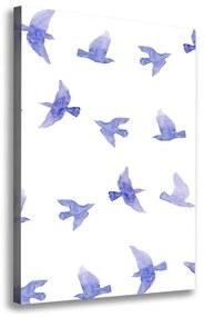 Foto obraz na plátne Modré lastovičky pl-oc-70x100-f-115357719