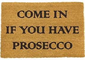 Rohožka z prírodného kokosového vlákna Artsy Doormats Prosecco, 40 x 60 cm