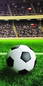 DETEXPOL Osuška Futbalová lopta Bavlna Froté, 70/140 cm