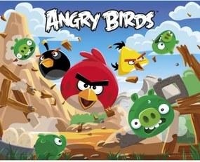 Plagát na stenu ANGRY BIRDS 40 x 50cm (MP1410) ANGRY BIRD ANG2989