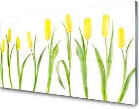 Obraz plexi Žlté tulipány kvety