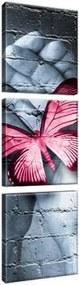 Obraz na plátne Motýlie graffiti 30x90cm 2346A_3V