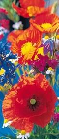 Fototapety, rozmer 86 x 200 cm, kvety, W+G 515