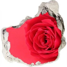 Diera 3D fototapety na stenu Červená ruža WallHole-75x75-piask-77656963