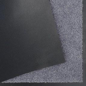 Hanse Home Collection koberce Rohožka Wash & Clean 101464 Grey - 40x60 cm
