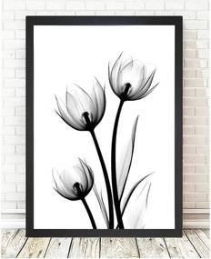 Obraz Tablo Center Scented Flowery, 24 × 29 cm