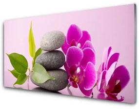 Sklenený obklad Do kuchyne Orchidea vstavač kamene 125x50cm