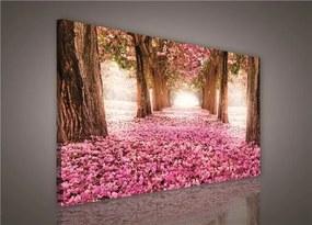 Obraz na plátne, rozmer 75 x 100 cm, alej stromov, IMPOL TRADE PP428O1