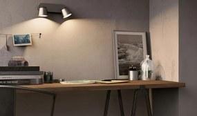 LED stropné svietidlo bodové Philips Dender 2x4W