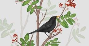BLACKBIRD ON ROWAN TWIG 2 – format A3