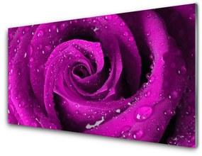 Nástenný panel Ruže kvet rastlina 140x70cm